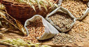 Модерният начин да търгуваш със зърно